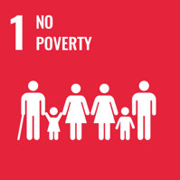 Cotonea contributes to achieving the UN's Sustainable Development Goals (SDG): Number 1 ending poverty